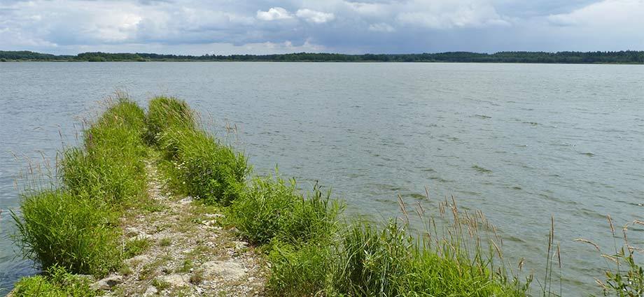 Rosenberger Teich